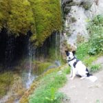 Wo du am Nürburgring einen Wasserfall finden kannst