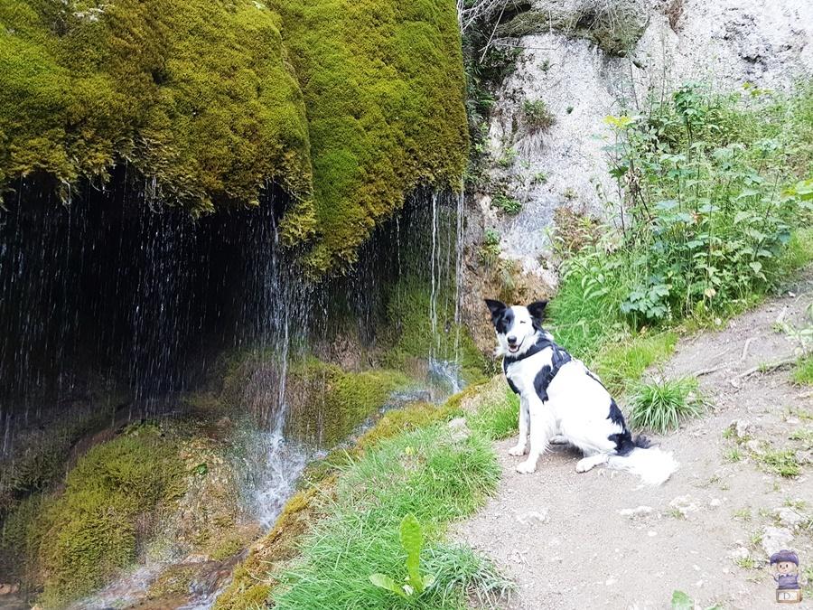 Wasserfall Nohn am Nürburgring 01