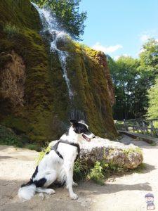 Wasserfall Nohn am Nürburgring 04