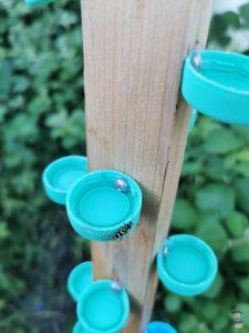 DIY Insekten Tränke Garten Upcycling 08