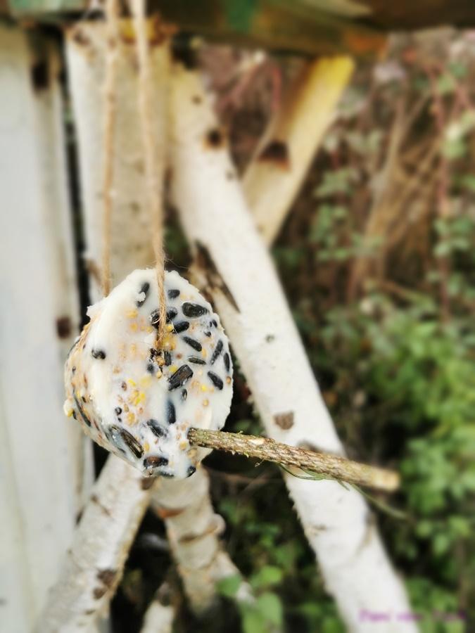 DIY Vogelfutter selber machen 11