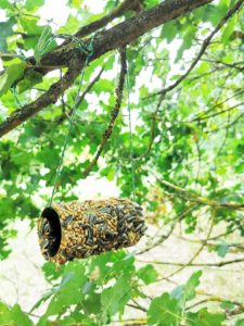 DIY Vogelfutter Rolle Upcycling aus Toilettenpapierrolle 06