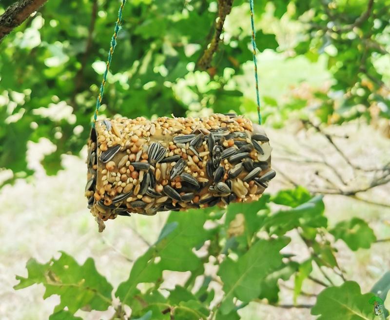 DIY Vogelfutter Rolle Upcycling aus Toilettenpapierrolle 11